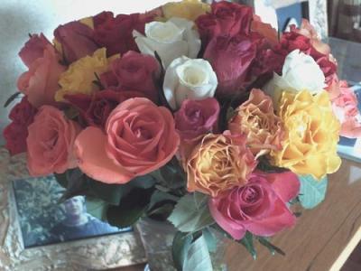 20080908135431-lola-y-las-rosas.jpg