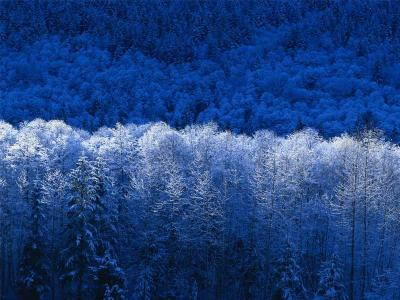 20090202160440-invierno.jpg