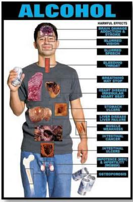 20090217170309-alcohol-effects.jpg