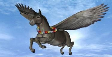 20210203151458-burro-volando.jpg